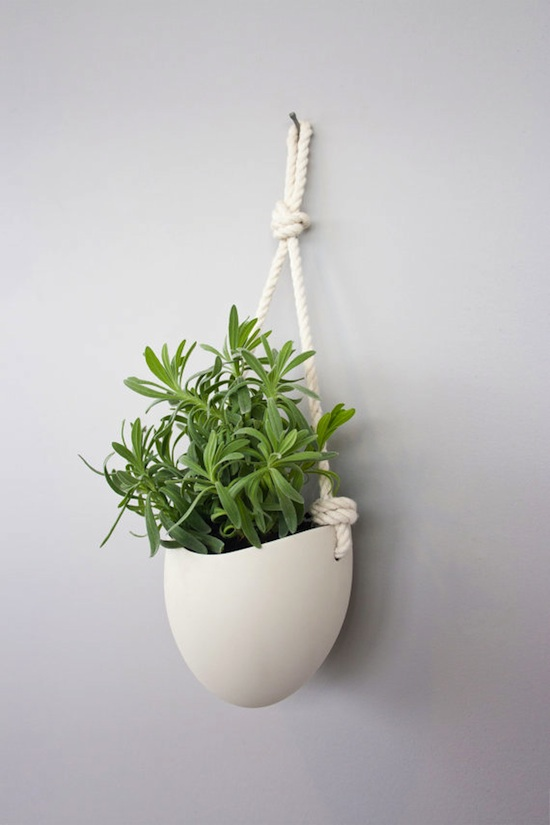 187 Ceramic Wall Planters By Light Ladder
