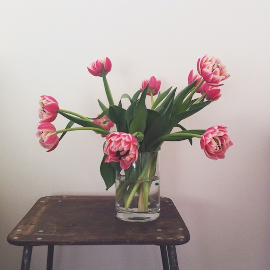 pink-parrot-tulips-on-ukranian-army-stool