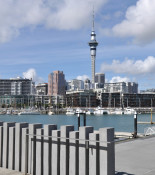 Auckland-in-1-day-sky-tower