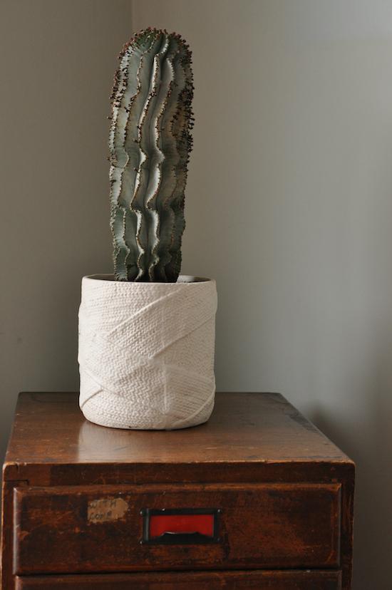 urban jungle bloggers - office cactus
