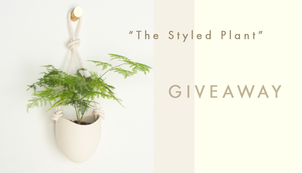 the-styled-plant---giveaway