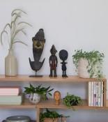 urban jungle bloggers plant shelfie.,