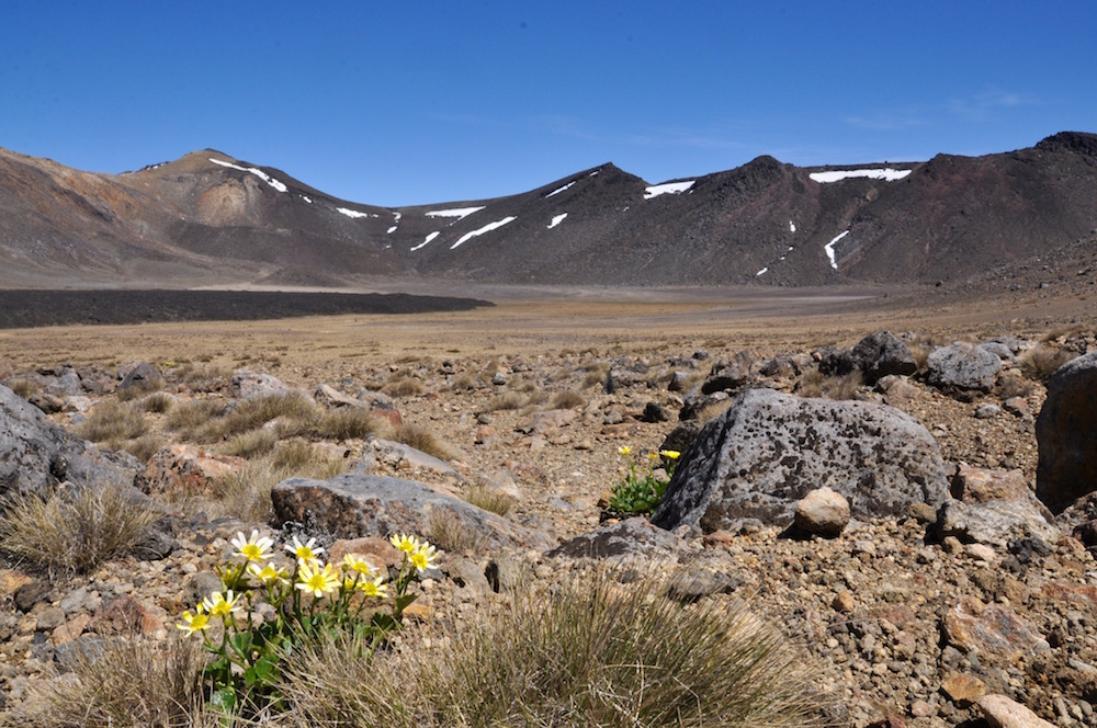 Tongariro alpine crossing.10